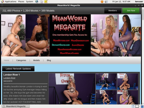 Discounted Mean World